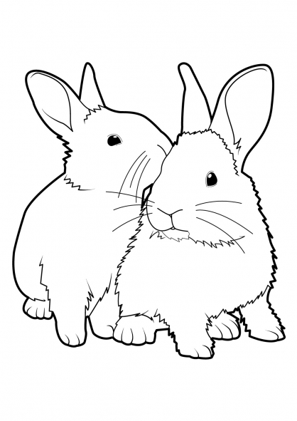 Coloriage Lapin 4