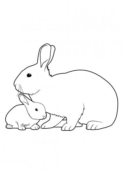 Coloriage lapin 6 coloriage lapins coloriage animaux - Lapin en dessin ...