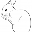 Coloriage Lapin 7