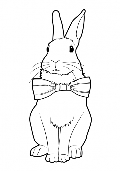 Coloriage lapin 9 coloriage lapins coloriage animaux - Coloriages lapins ...