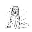 Coloriage Loup 10