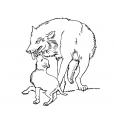 Coloriage Loup 4