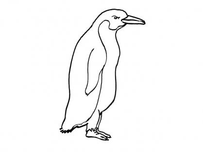 Coloriage Mammifère marin 1