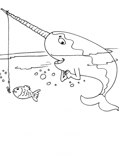 Coloriage Mammifère marin 24