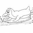 Coloriage Mammifère marin 29
