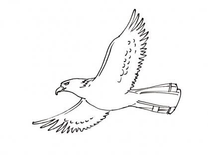 Coloriage Oiseau 1
