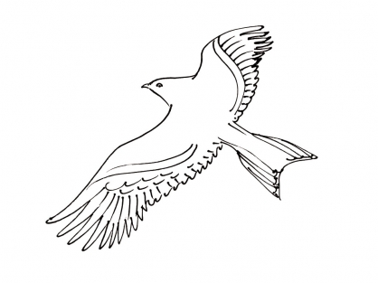 Coloriage Oiseau 14