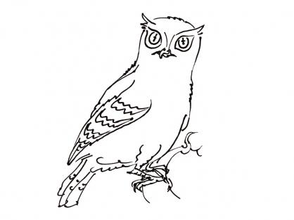 Coloriage Oiseau 15