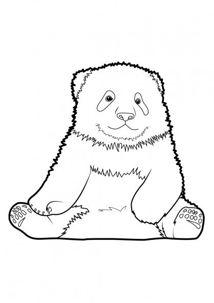 Coloriage Panda 1