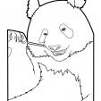 Coloriage Panda 15