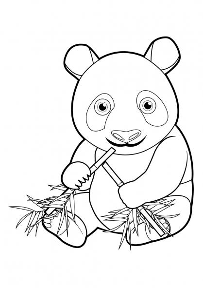 Coloriage panda 16 coloriage pandas coloriage animaux - Panda coloriage ...