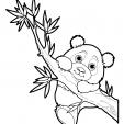 Coloriage Panda 17