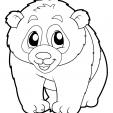 Coloriage Panda 20