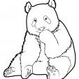 Coloriage Panda 7