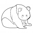Coloriage Panda 8
