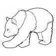 Coloriage Panda 9