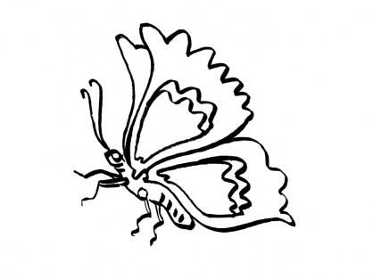 Coloriage Papillon-1