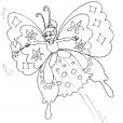 Coloriage Papillon 17