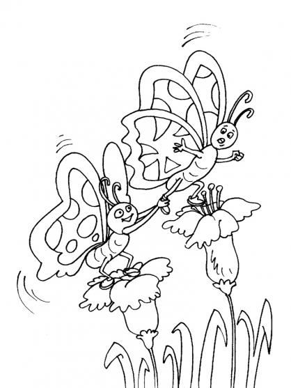 Coloriage Papillon-25