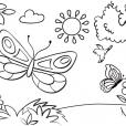 Coloriage Papillon-31