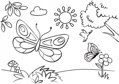 Coloriage Papillon-31