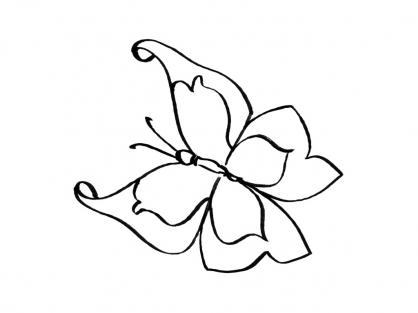 Coloriage Papillon-5