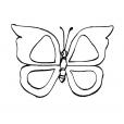 Coloriage Papillon 9