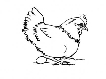 Coloriage poule 9 coloriage poules coloriage animaux - Coloriage poules ...