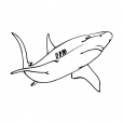 Coloriage Requin 1