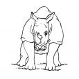 Coloriage Rhinocéros 10