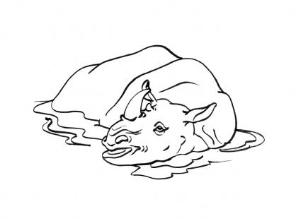 Coloriage Rhinocéros 13
