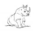 Coloriage Rhinocéros 14