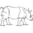 Coloriage Rhinocéros 2
