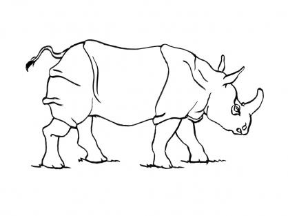 Coloriage rhinoc ros 2 coloriage rhinoc ros coloriage - Rhinoceros dessin ...