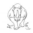Coloriage Rhinocéros 3