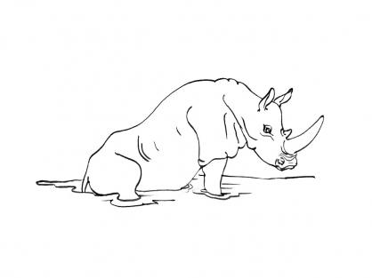 Coloriage Rhinocéros 4