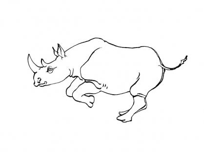 Coloriage Rhinocéros 6