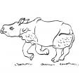 Coloriage Rhinocéros 7