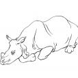 Coloriage Rhinocéros 9