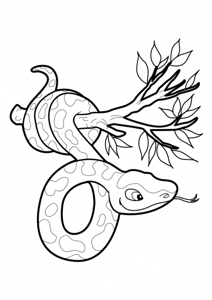 Coloriage Serpent 18