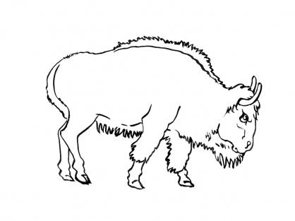 Coloriage Vache 11