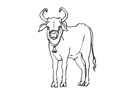 Coloriage Vache 13