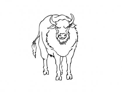 Coloriage Vache 15