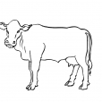 Coloriage Vache 2