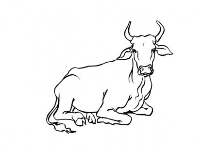 Coloriage Vache 3