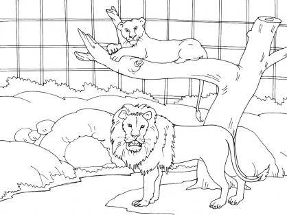 Coloriage Zoo 11