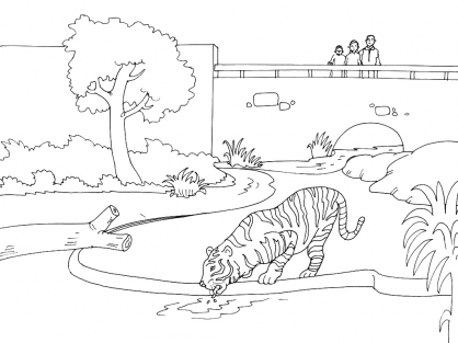 Coloriage Zoo 12
