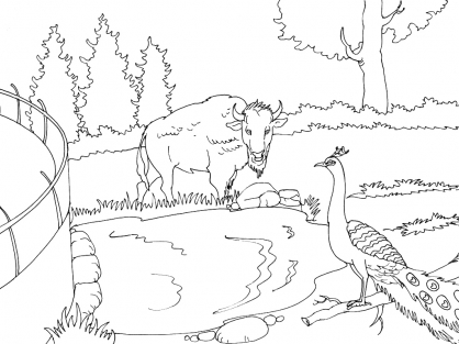 Coloriage Zoo 15