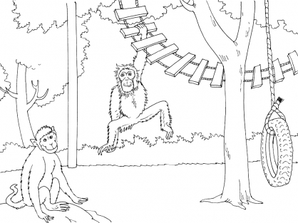 Coloriage Zoo 4