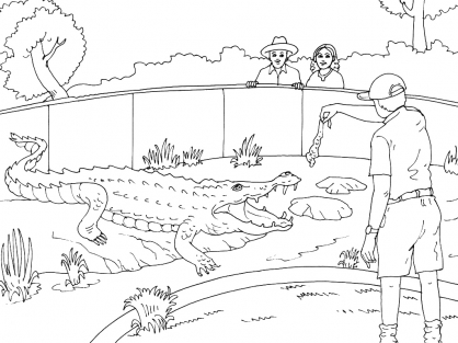 Coloriage Zoo 5